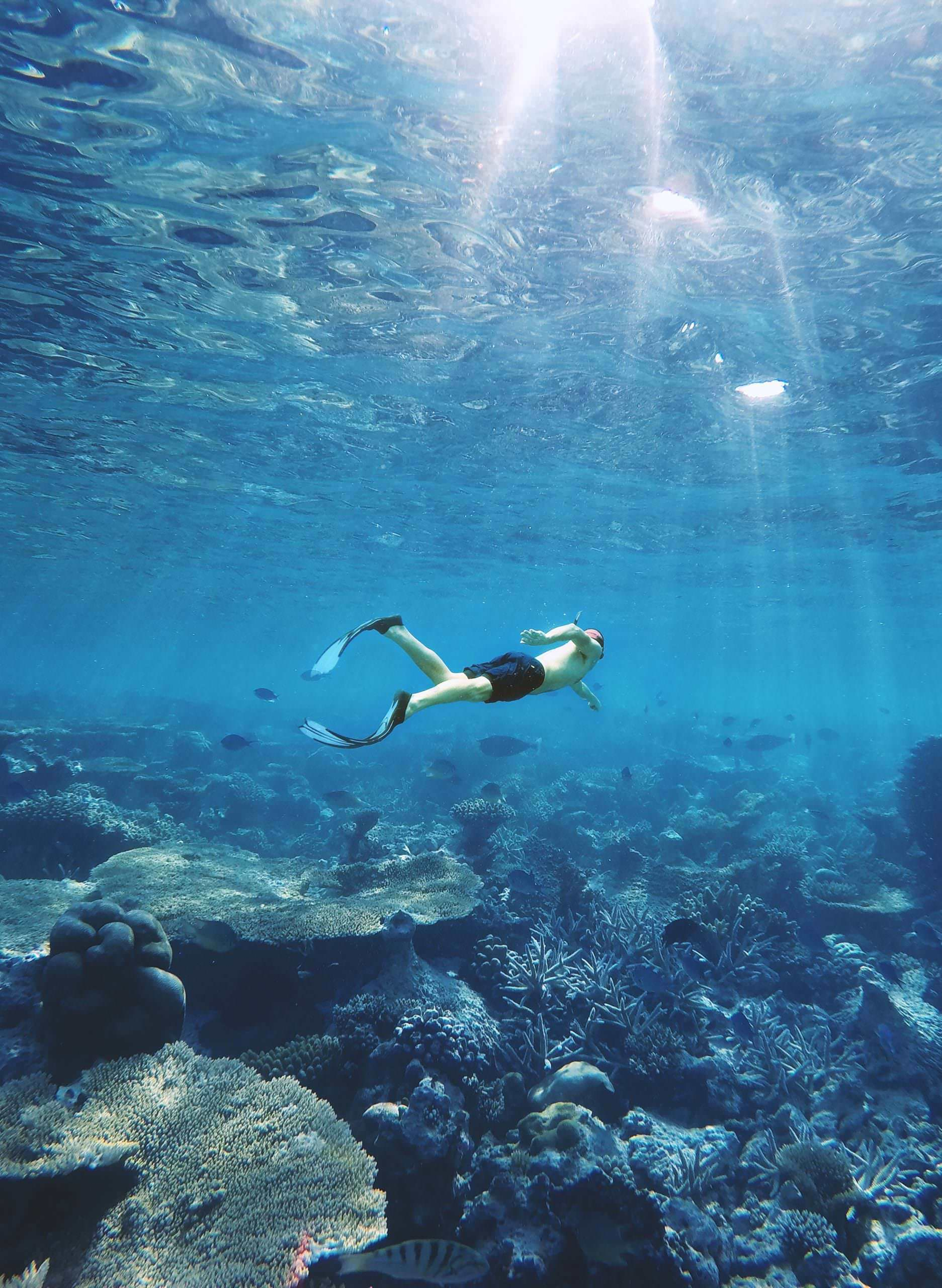 A freediving man swims over a reef